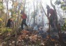 """""""เห็ด"""" ช่วยได้!!! นักวิจัย สวพส. แนะแนวทางใช้เห็ดป่า แก้ปัญหาฝุ่น ควัน และไฟป่า"""